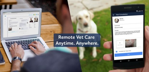 Receive Pet Care from Home